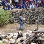 Fiesta  de Los Pastores - El Hierro (Abril de 2005).