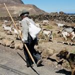 El cabrero José Domingo De León Dorta con su Lata, ganado y perro - Haría - Lanzarote - Yuri Millares - Pellagofio.com - Islas Canarias.