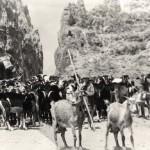 Imágenes del Siglo XX en la Isla de Gran Canaria - Federación de Salto del Pastor Canario (2001-2021).