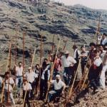 Mogán 1994 y Veneguera 1995 – II y III Encuentro Nacional de Salto del Pastor – Mogán – Gran Canaria.